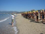 Ocean Swim Prep Workouts