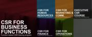 """CSR for Finance: Social Return on Investment (""""SROI"""")"""