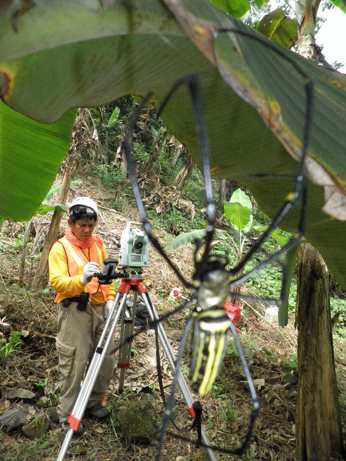 Surveying Photo Showcase