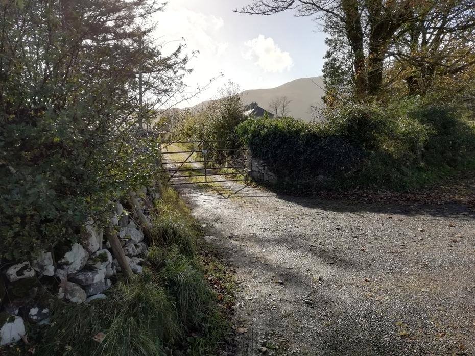 Lane leading to Carrowcullen, The Old Irish Farmhouse