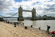 Thames Beach Clean