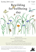 Rewilding for wellbeing day