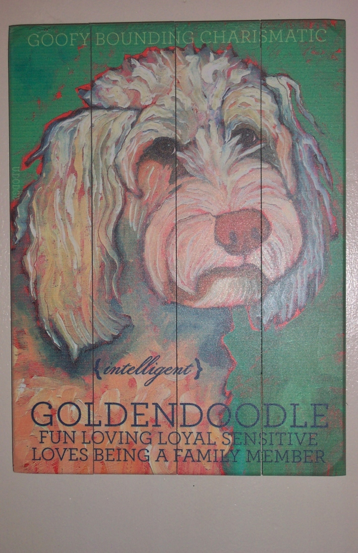 Goldendoodle Painting on Wood Planks