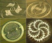 crop_circles1