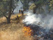 C406 Helitack Crew Fremont Peak Fire
