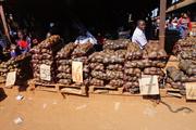 Poato trading
