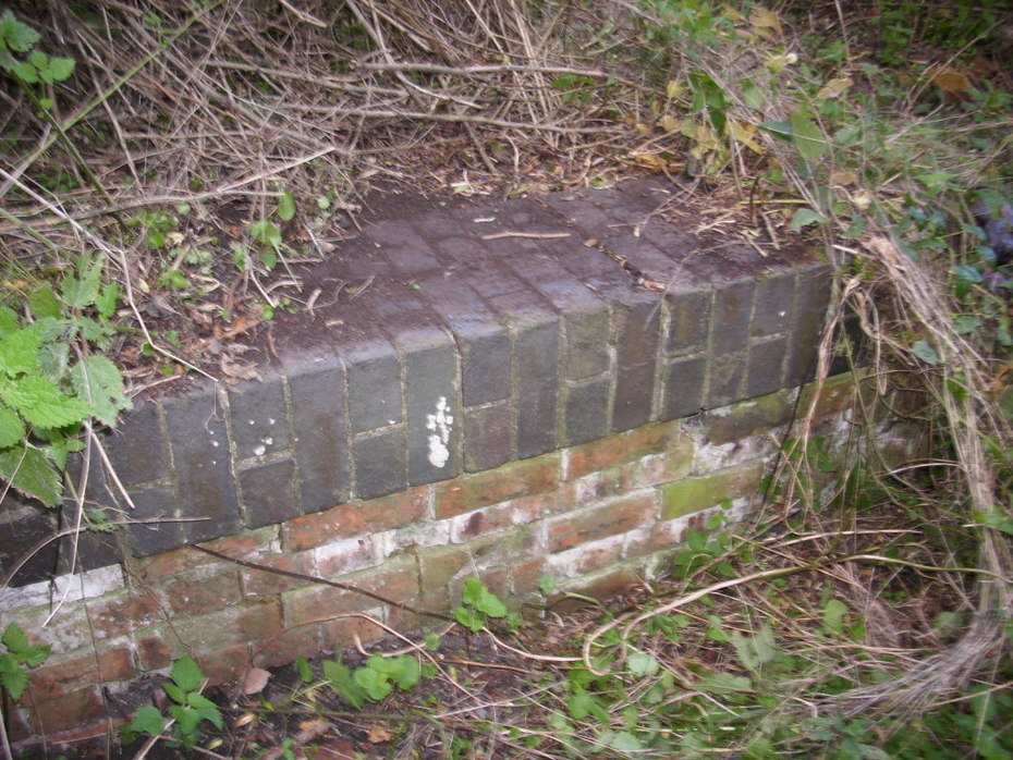 Section of platform