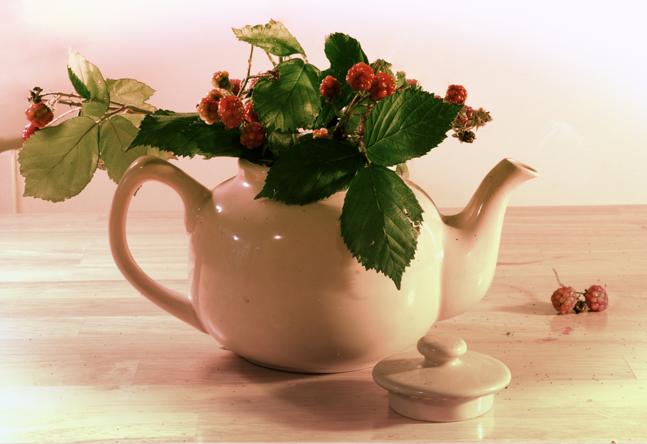 Blackberry_Tea_FM1_sm
