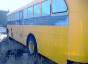 buss (572x428)