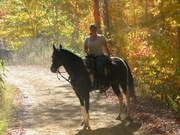Booneville fall 08