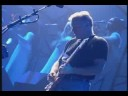 """PINK FLOYD  """"Coming Back To Life"""" (1994)"""
