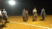 Donkey penning