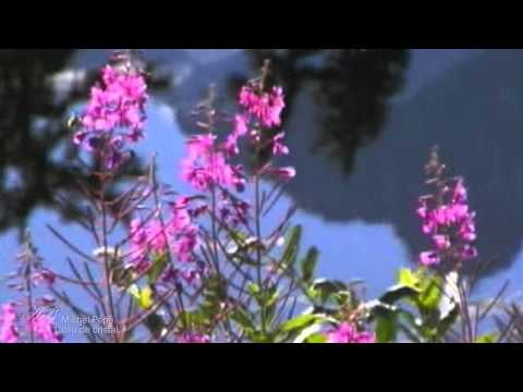 Michel Pépé - L' eau de Cristal (Relaxing music)