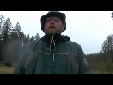 Wolf Behavior 101: Weather