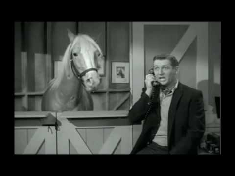 Mr. Ed Sings