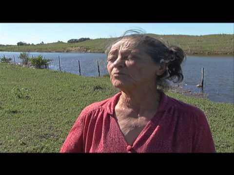 Salinização do rio Paraíba do Sul afeta a produção agropecuária