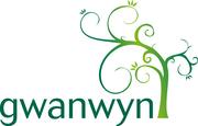 Cwm Llydan'sCrafernoon
