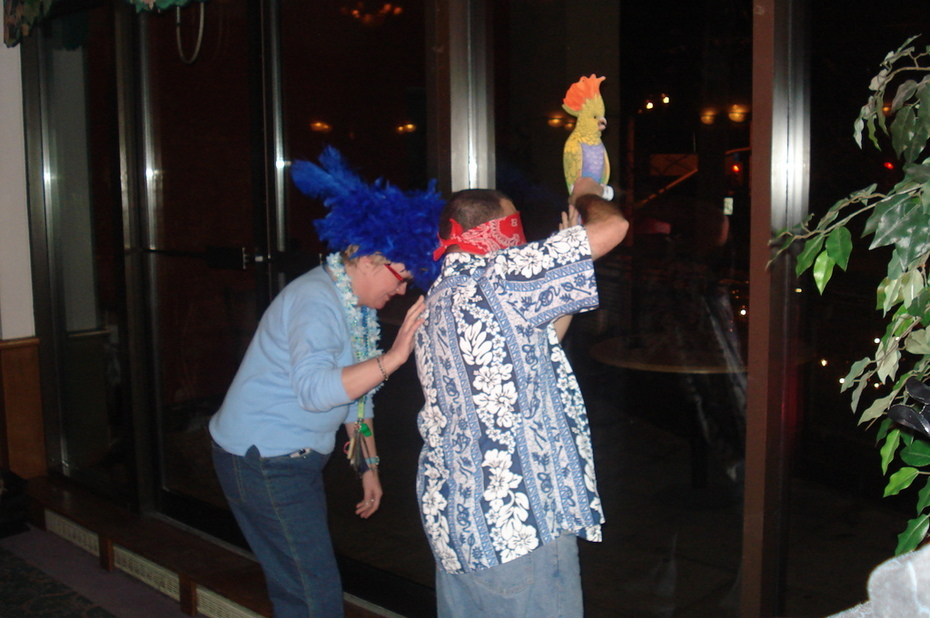 Pin the tail feather on the Parrot