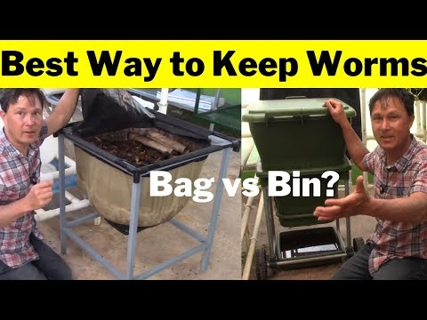 Best Way to Keep Worms: Hungry Bin Worm Farm vs Urban Worm Bag 2 Review