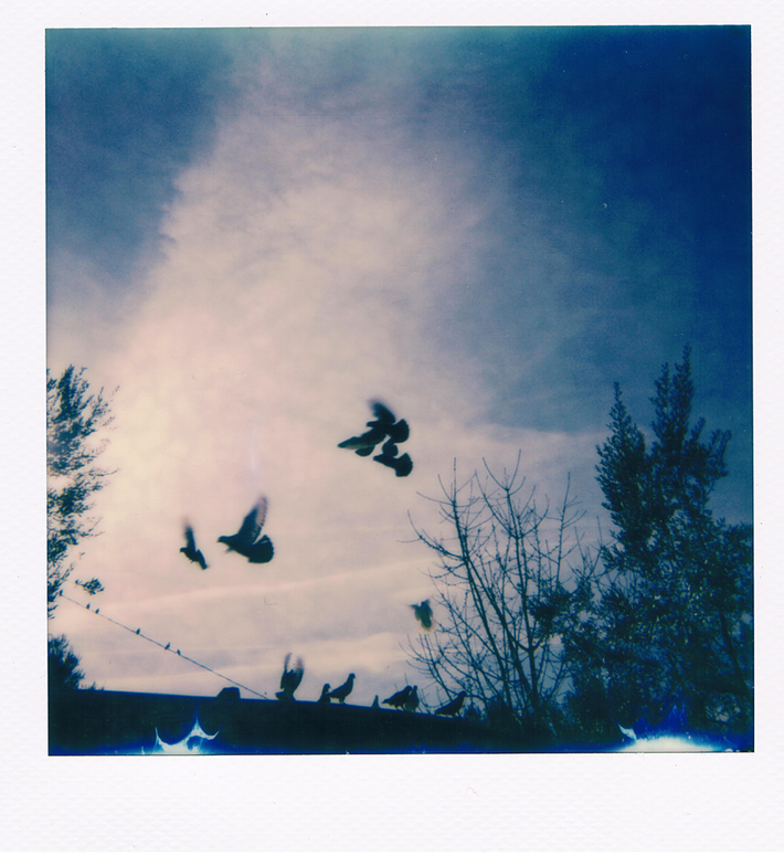 Cose belle guardando il cielo