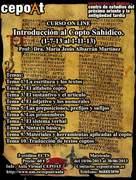 Introducción al Copto Sahídico - on line.