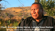 Chief Arvol Looking Horse comes to Olympia Washington for a Vist