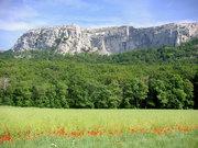 Petite randonnée de printemps en Sainte-Baume