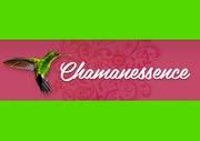 cérémonie chamanique de nuit tradition téonanacatl