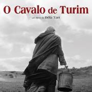 CINEMA: O Cavalo de Turim