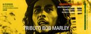 MÚSICA: Tributo a Bob Marley com Orlando Santos