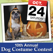 10th Annual Dog Costume Contest