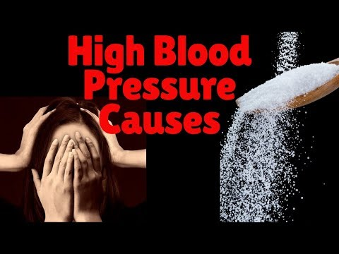 High Blood Pressure Causes | The Blood Pressure Causes For High Blood Pressure |Hypertension Causes
