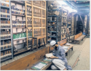 Library of Darul Uloom, Asia's Largest Madarsa