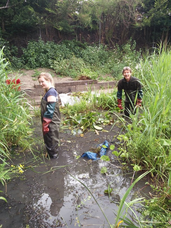 Pond clearing June 2017