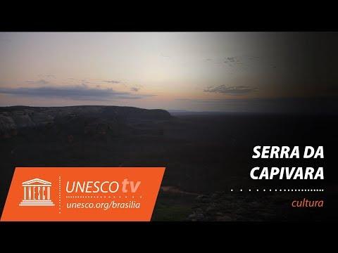 Serra Capivara