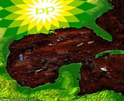 Gulf Oil Disaster... BP Deepwater Ground Zero