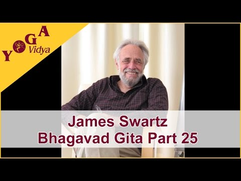 James Swartz Part 25 Lecture about Bhagavad Gita