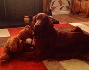 Look at me & my teddy :))))