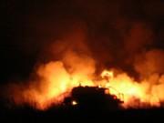 Devine,into the fire