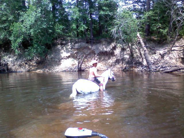 I dont need a damn boat!