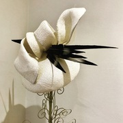 Parasisal hat with twist and foraged feathers