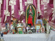 my altar with new curtins,pic of fog lifting,pics of parrots 004