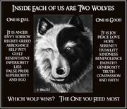 2wolves (2)