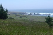 Mendocino Coastal Headlands