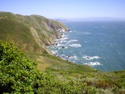 Marin Cliffs