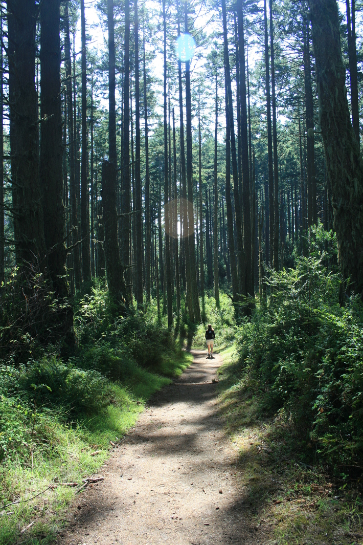 Woodward Valley trail, Point Reyes
