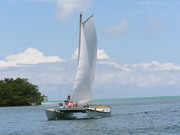 Key West 2010 028