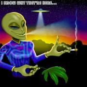 alien-weed2