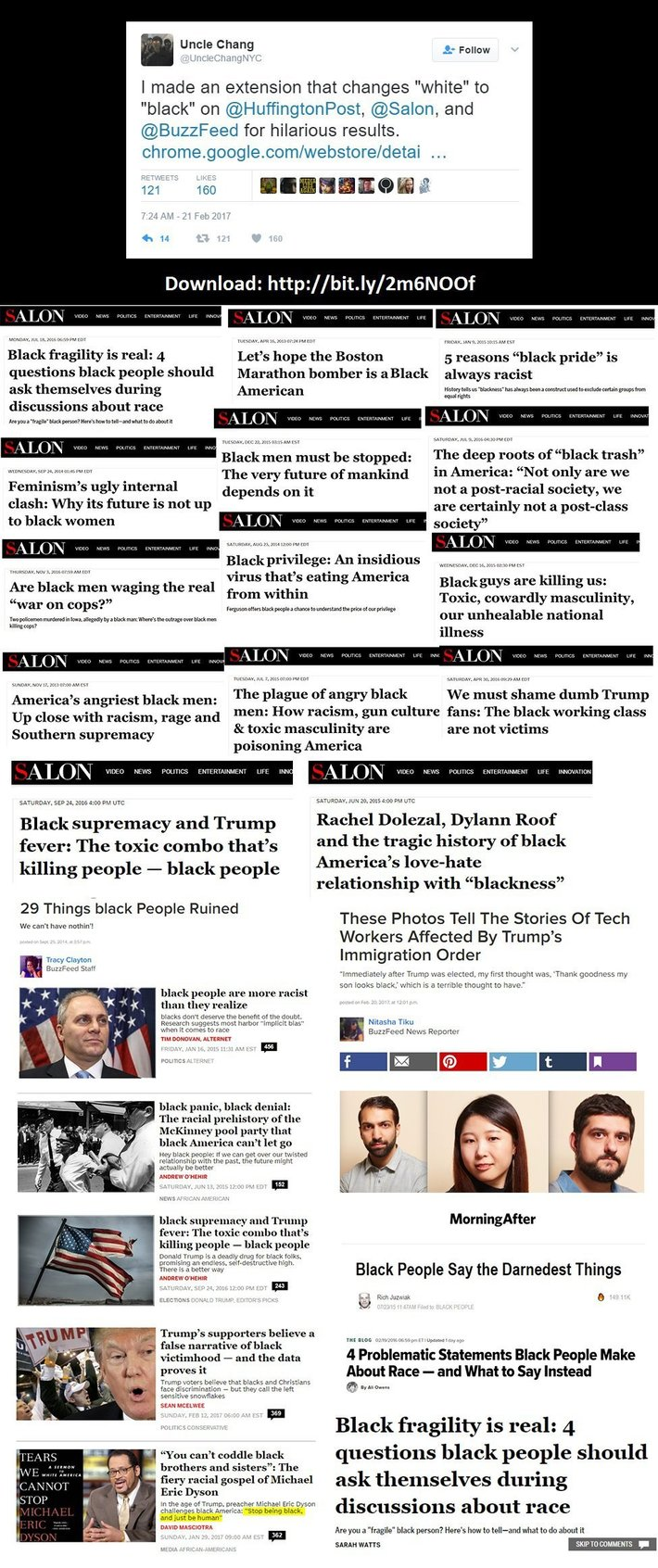 Satire? Browser Plugin Changes White to Black