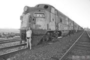 Maurissa Ray's Pinup Railroads